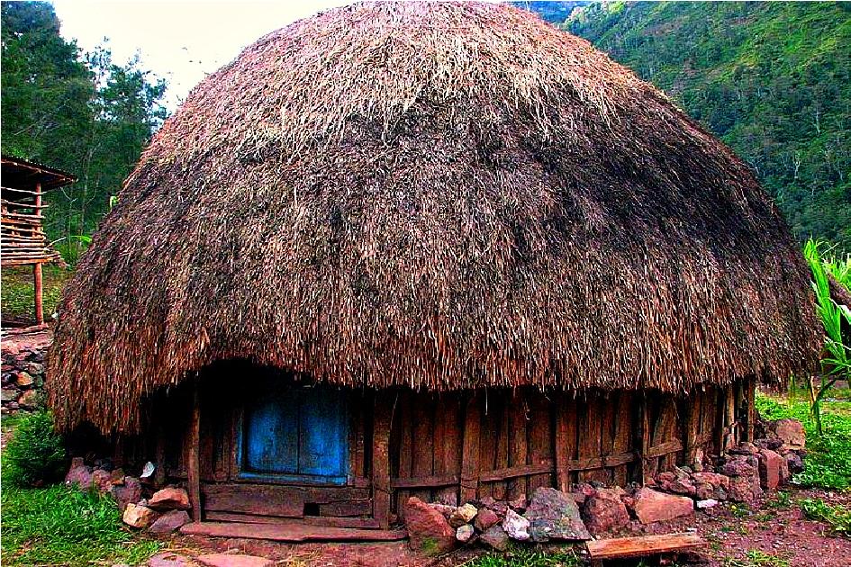 بيت هنوي