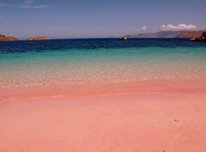 The romantic Pink Beach of the Komodo Islands